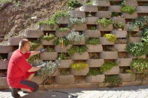 Vertical Garden in Retaining Wall