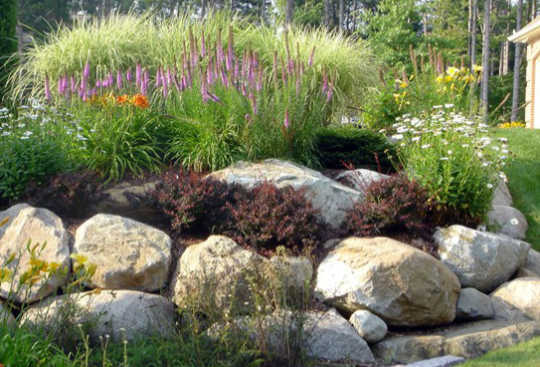 Boulders To Improve Your Landscape Design