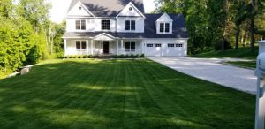 Beautiful, well-manicured green lawn in front of a nice home
