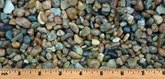 "7/16"" Missouri Rainbow multicolor decorative landscape gravel"